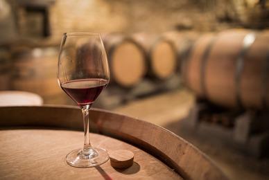 Vin des Côtes de Gascogne produit à Maumusson Laguian